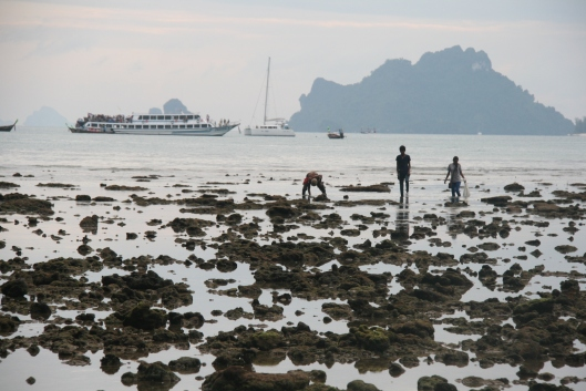 Tonsai low tide